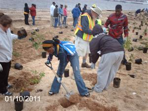 Ben Franklin High Schools students planting Bay Grasses