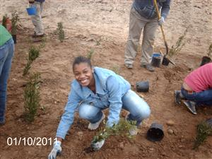 Ben Franklin High School students in Baltimore stabilize the Chesapeake By shoreline by planting Bay Grasses