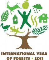 2011 is International Year of Forests!