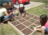 Project Produce Garden Sparks Healthy Lifestyle Changes