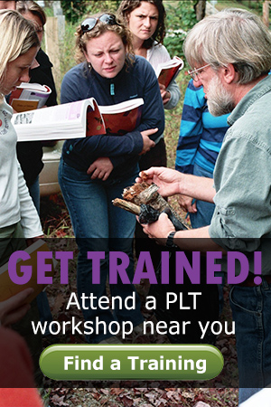 Get trained with a PLT workshop