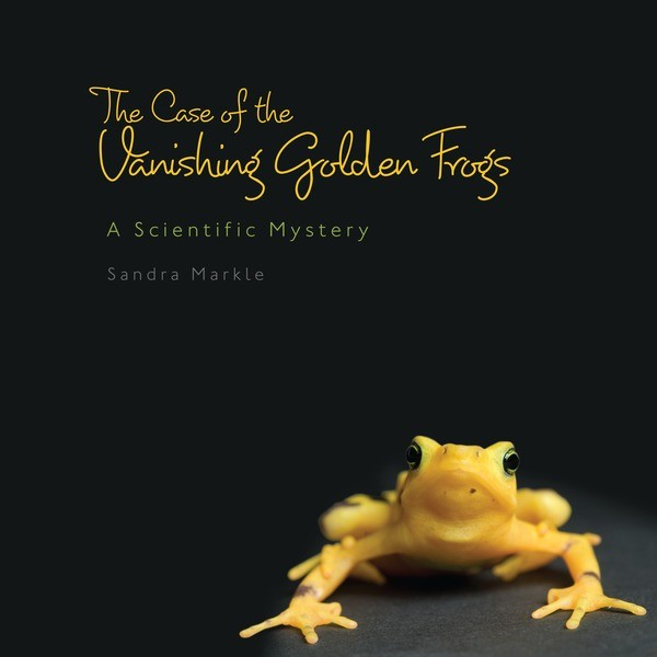 The Case of the Vanishing Golden Frogs