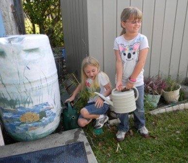 Students use rain barrels to water school gardens