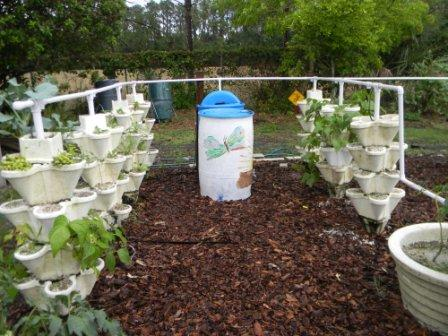 School gardens use hydroponics and drip irrigation