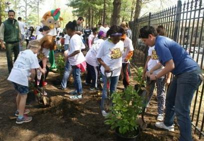 tree planting at yu ying