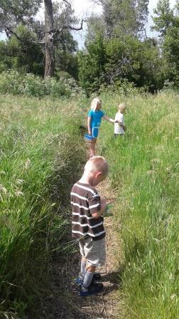 Children on a nature hike