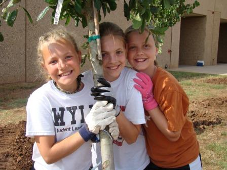 Students plant a tree at their school