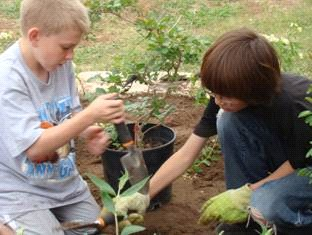 2-boys-planting-school-butterfly-garden