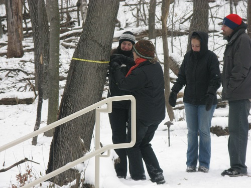 high-school-students-measure-circumference-of-tree-in-winter
