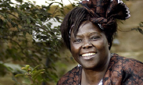 Wangari Maathai photo