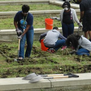 Urban high school students break ground for a garden