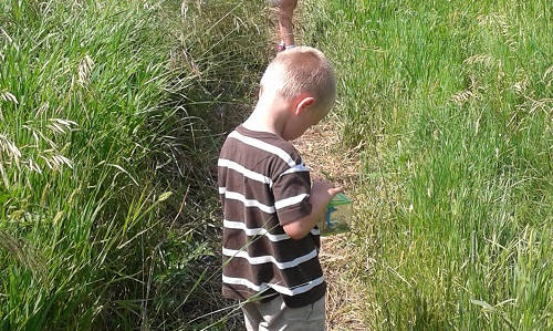 kids-monitoring-taking-notes-on-path-outside
