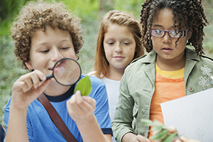 Children look at green leaf through magnifying glass