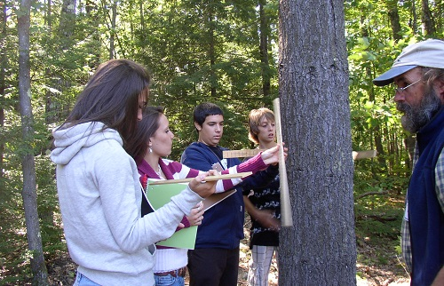 High School - Focus on Forests - Activity 1, Monitoring