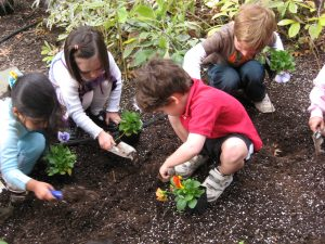 soil stories nature activity for family