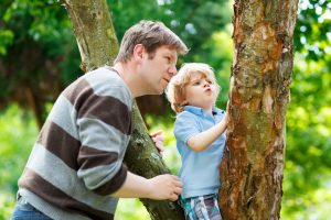 how big is your tree nature activity family