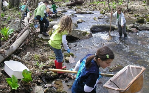 willow-school-students-exploring-stream