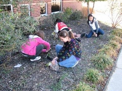 wolford-elementaryschool-garden