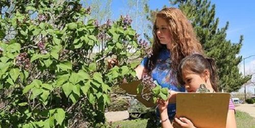 girls-with-clipboards-examine-tree-leaves-flowers