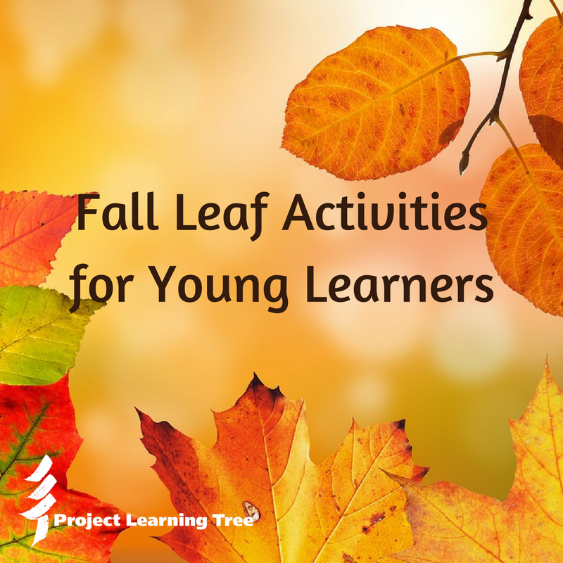 Leaf Activities for Young Learners - Project Learning Tree