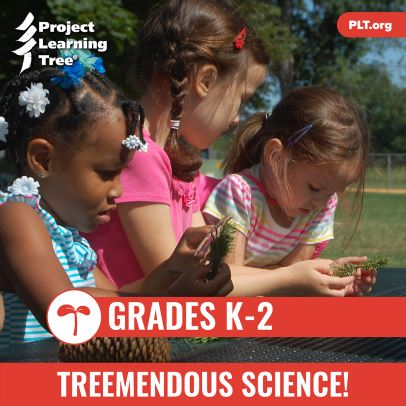 Curriculum_cover_Grades_K-2_Treemendous_Science