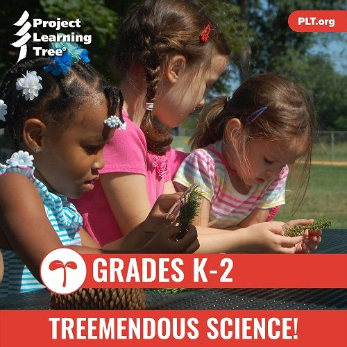 K-2-curriculum-Treemendous-Science