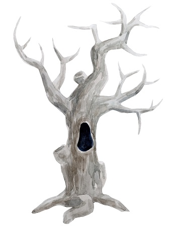 old-dead-hollow-tree-illustration