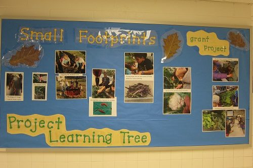 Classroom-board-display-grant-project