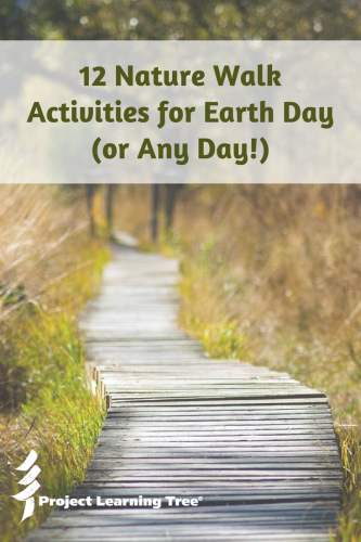 12 Nature walk activities for Earth Day (or any day!)