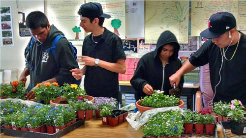 students-plant-spring-color-bowls