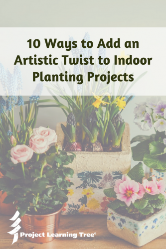 10 ways to add an artistic twist to indoor planting projects