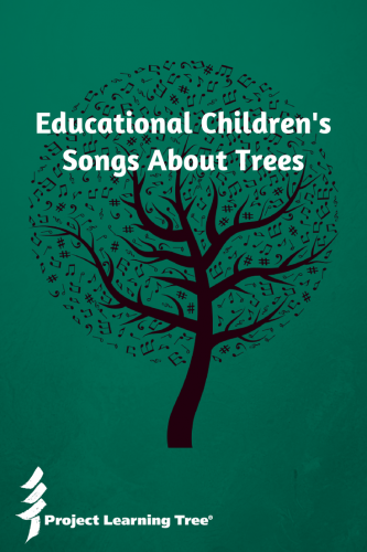 Educational Children's songs about trees