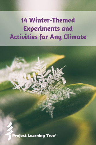 14 winter-themed experiments and activities for any climate
