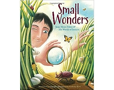 childrens-book-cover-small-wonders-jean-henri-fabre-insects