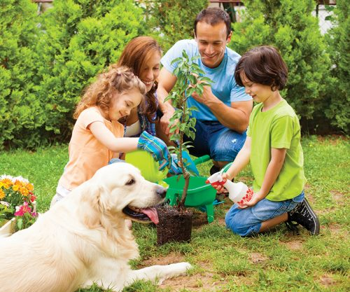 Family with two children and dog planting tree and flowers in a back yard