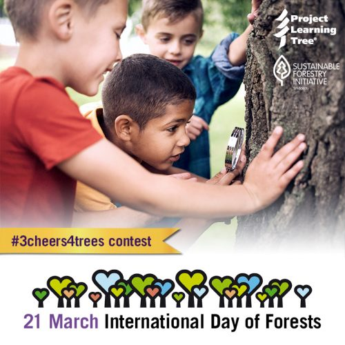 #3cheers4trees-boys-magnifying-glass-tree