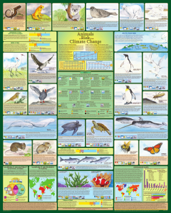 Animals at Risk from Climate Change poster