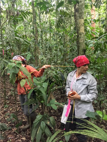 Silvia Alvarez-Clare tree conservation ecologist