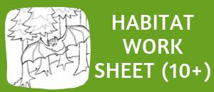 bat habitat student worksheet