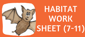 download the free bat habitat worksheet for ages 7-11