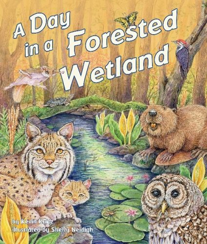 A Day in a Forested Wetland book cover