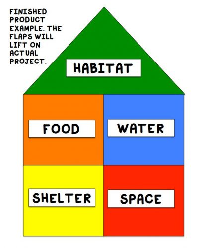 habitat spy house template