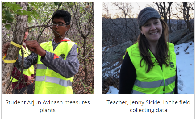 Student Arjun Avinash measures plants and teacher, Jenny Sickle, collects data in the field