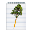 Pencil transforming into a tree above a notebook