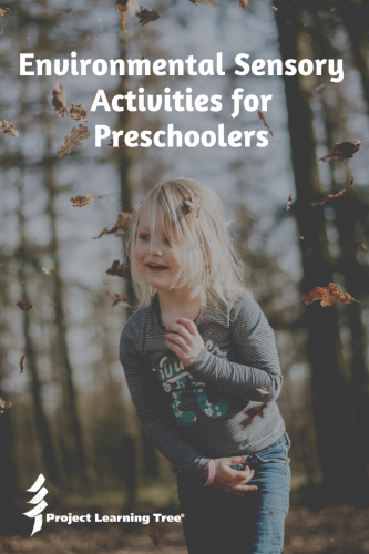 Environmental Sensory Activities for Preschoolers
