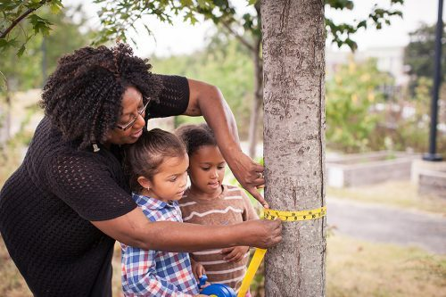 teacher measure the circumference of a tree with students
