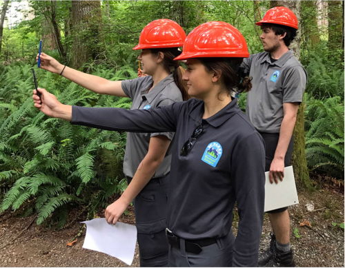 Young Forestry Professionals Outdoors
