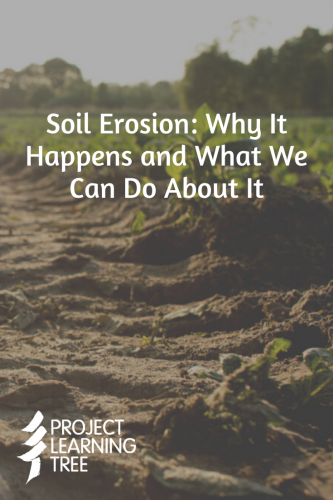 Soil Erosion: Why it happens and what we can do about it