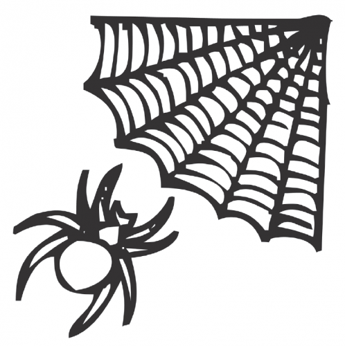 Illustration-of-spider-approaching-a-web
