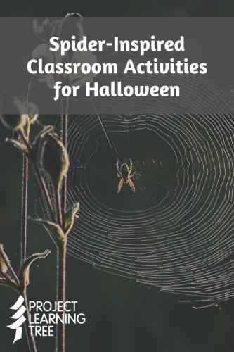 Spider-inspired classroom activities for halloween
